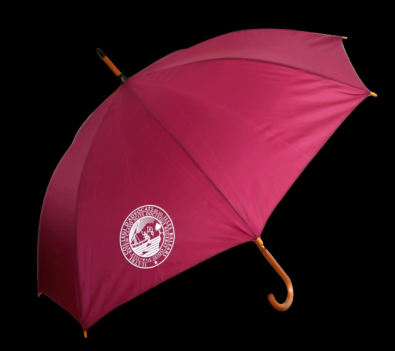 Resguárdate de la lluvia con el paraguas del ICAIB