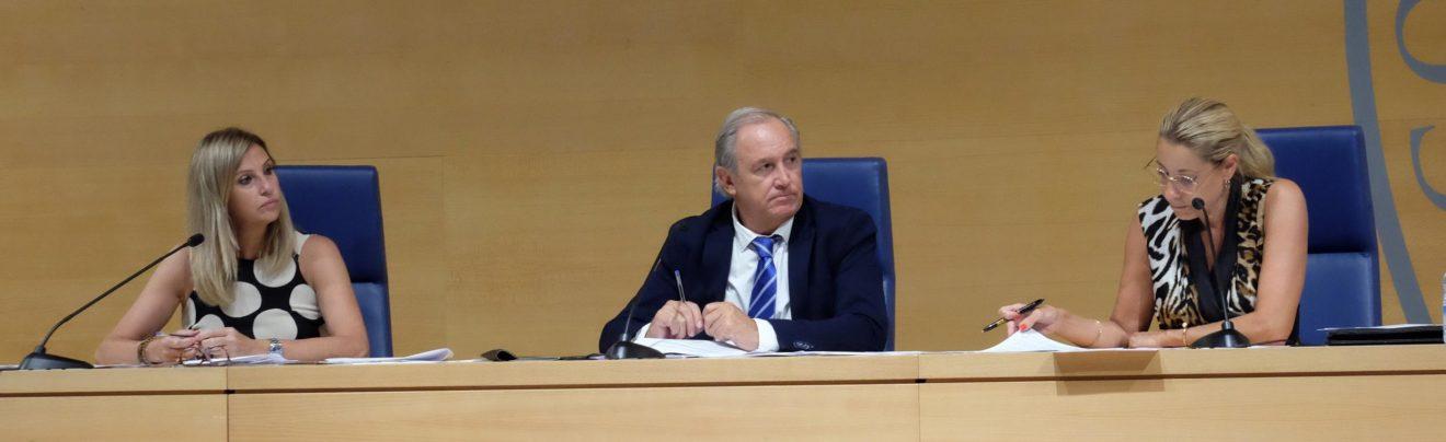 Aprobada por unanimidad la cuenta de gastos e ingresos del ICAIB del ejercicio del 2019